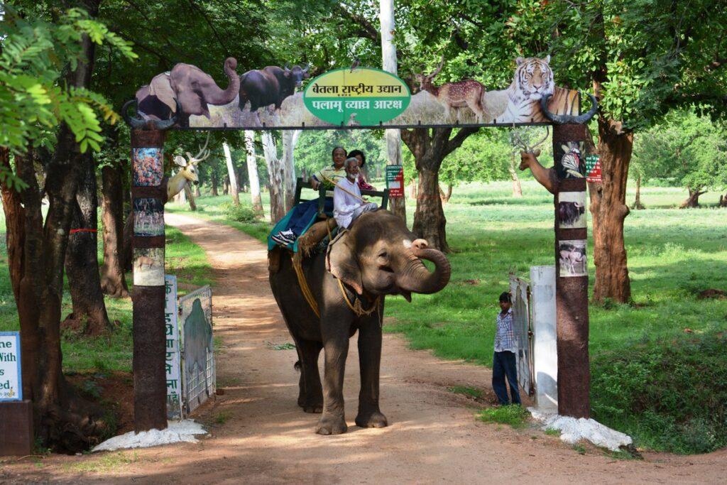 Palamau National Park Betla Jharkhand